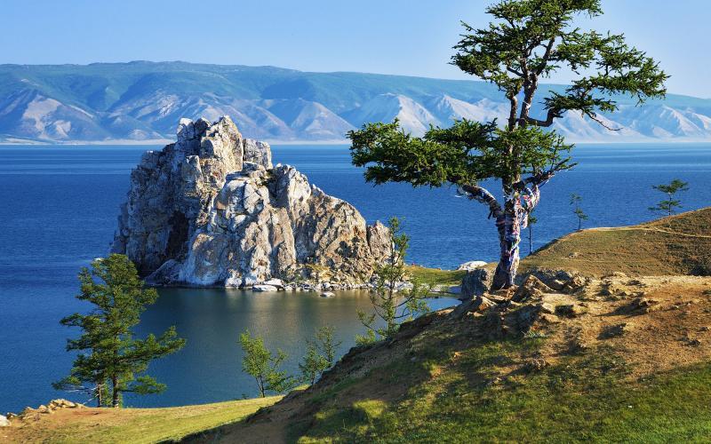 Nelle foreste siberiane