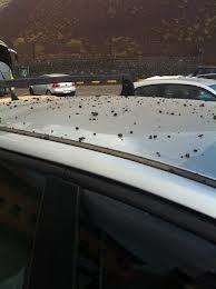 Etna: pioggia di lapilli sulle auto
