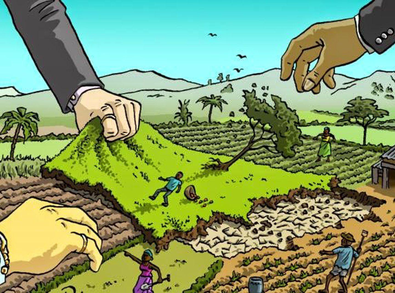 Chi nutre il pianeta