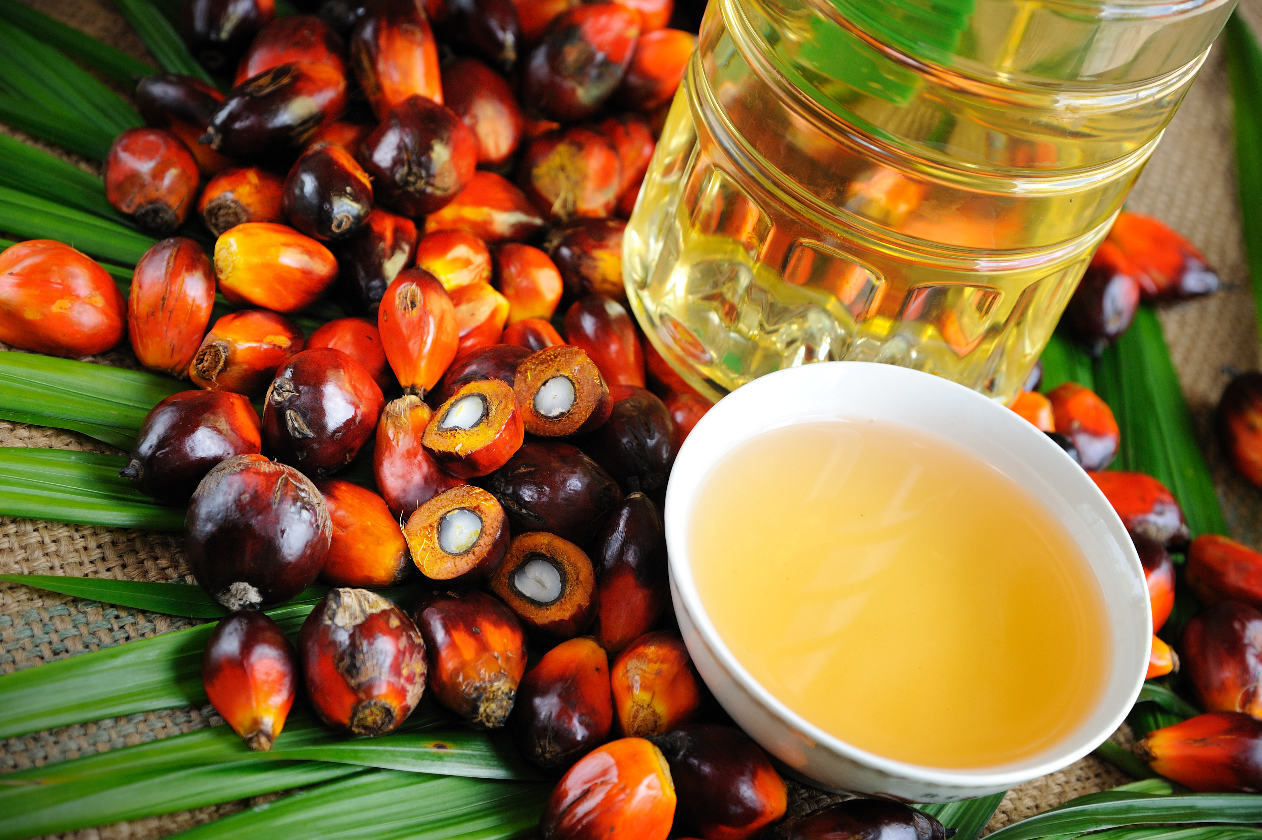 Senza olio di palma?