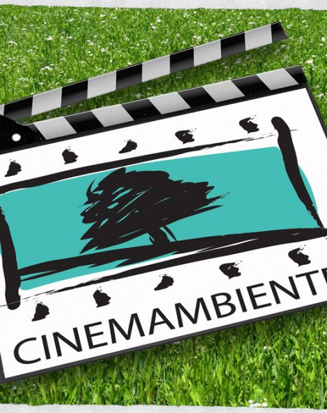 L'ambiente in celluloide